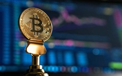 Strong volume growth: Bitcoin competes with large assets such as gold